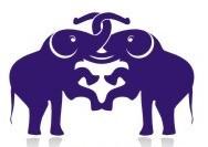 due elefanti thailandesi